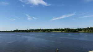 Mount Vernon Trail and treeline from Arlington Memorial Bridge